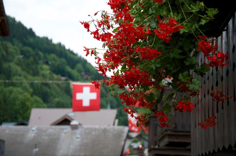Swiss Reds